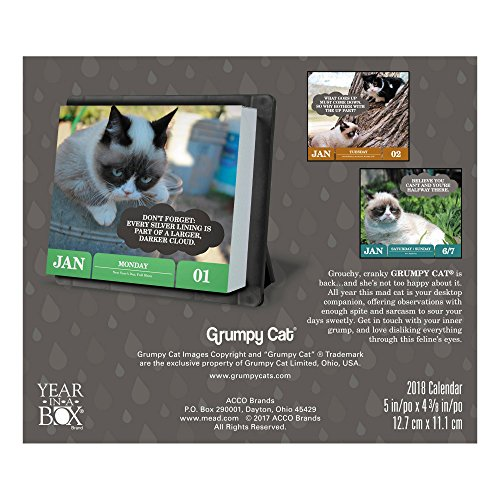 2018 Grumpy Cat Calendar Year In A Box Buy Online In