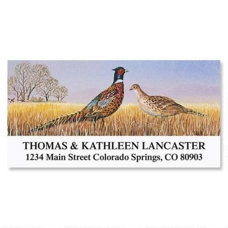 Pheasants Personalized Return Address Labels- Set of 144, Large Self-Adhesive, Flat-Sheet Labels, By Colorful Images