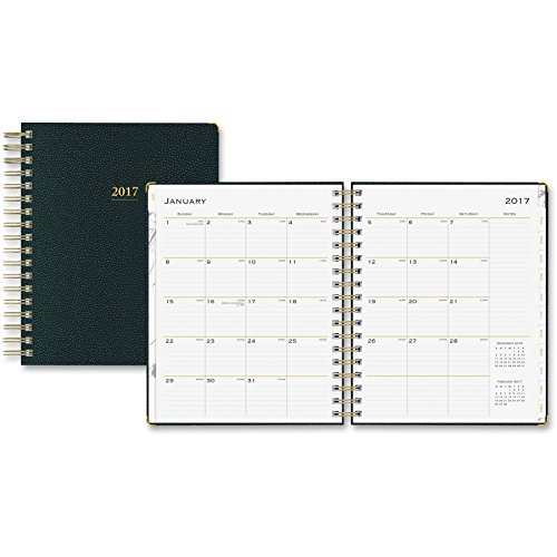 Blue Sky Carrera 7 x 9 Daily/Monthly Planner, 2017