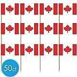 Canadian Flag Picks 50ct