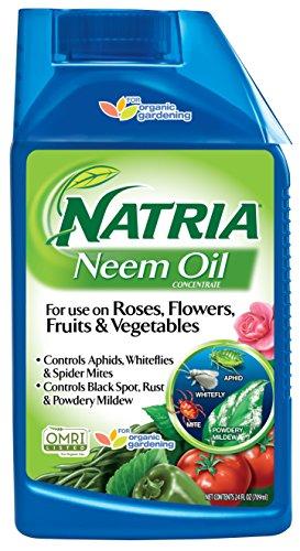 garden safe neem oil extract - 4