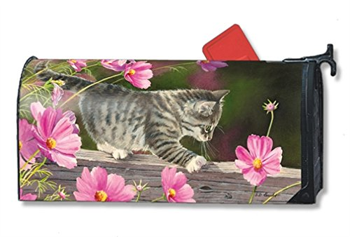 MailWraps Curious Kitty Mailbox Cover 01341 Cat Mailbox Covers