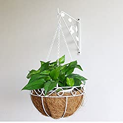 JM Wrought Iron Wall-Mounted Coconut Palm Wall Hanging Spider Plant Balcony Living Room Basket Green Shelf (Size : A)