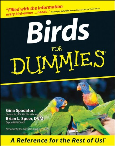 Birds For Dummies
