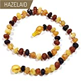 Hazelaid (TM) 12'' Pop-Clasp Baltic Amber Multicolored Semi-Polish Necklace