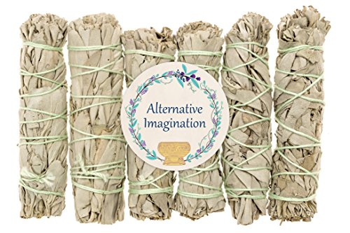 Alternative Imagination 6 Pack - Premium California White Sage Smudge Sticks, Each Stick Approximately 4 Inches Long Brand. Made in USA. by Alternative Imagination