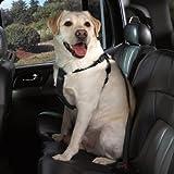 Cruising Companion Nylon Car Harness for Dogs, Small-Medium, Black
