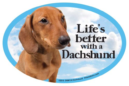 - Prismatix Decal Cat and Dog Magnets, Dachshund