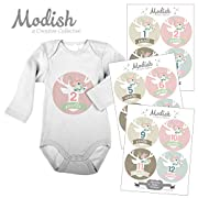 Modish Labels 12 Monthly Baby Stickers, Baby Girl, Woodland, Flowers, Floral Antlers, Baby Month Stickers, Baby Book Keepsake, Photo Prop, Baby Shower Gift