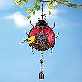 Hanging Metal Mesh Ladybug Birdfeeder
