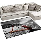 Shipwreck Girls Bedroom Rug Weathered Photo of Aged and Decayed Flaking Anchor on The Beach by The Hills Marine Door Mat Indoors Bathroom Mats Non Slip 40'x55' Orange
