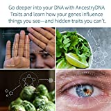 AncestryDNA: Genetic Testing Ethnicity + Traits