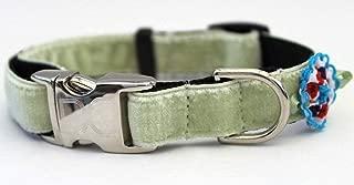 product image for Diva-Dog 'Dori' Velvet Custom Engraved Dog Collar