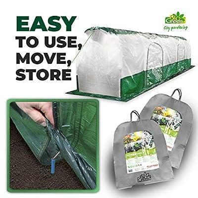 Bio Green SD300 Superdome Growtunnel, Garden Cl Length 9.8 x Width 2.3 ft, 2.6 x 2.3X 9.8', Transparent/Green from Bio Green