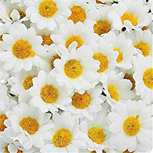 Adeeing 100 Pcs Artificial Flowers, White Daisy with Yellow Center for Wedding Party Home Decoration DIY Scrapbook 2