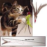 Go Cat Da Bird Pull 2 Piece Pull Apart Rod & Bird, Handmade in The USA (1 Bird)