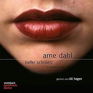 Tiefer Schmerz Audiobook