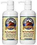 Grizzly Salmon Oil All-Natural Dog Food Supplement in Pump-Bottle Dispenser 16 ounces (2 pack)