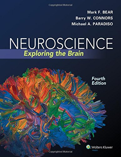 Neuroscience: Exploring the Brain cover
