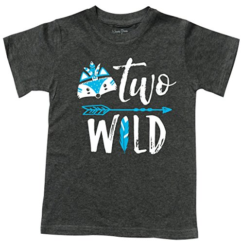 Feisty and Fabulous Boys Tee, Two Wild, Gift for 2 Yr Old, Gray Size 2]()