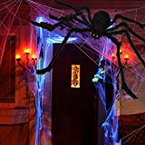 "OCATO 200"" Halloween Spider Web + 59"" Giant Spider"