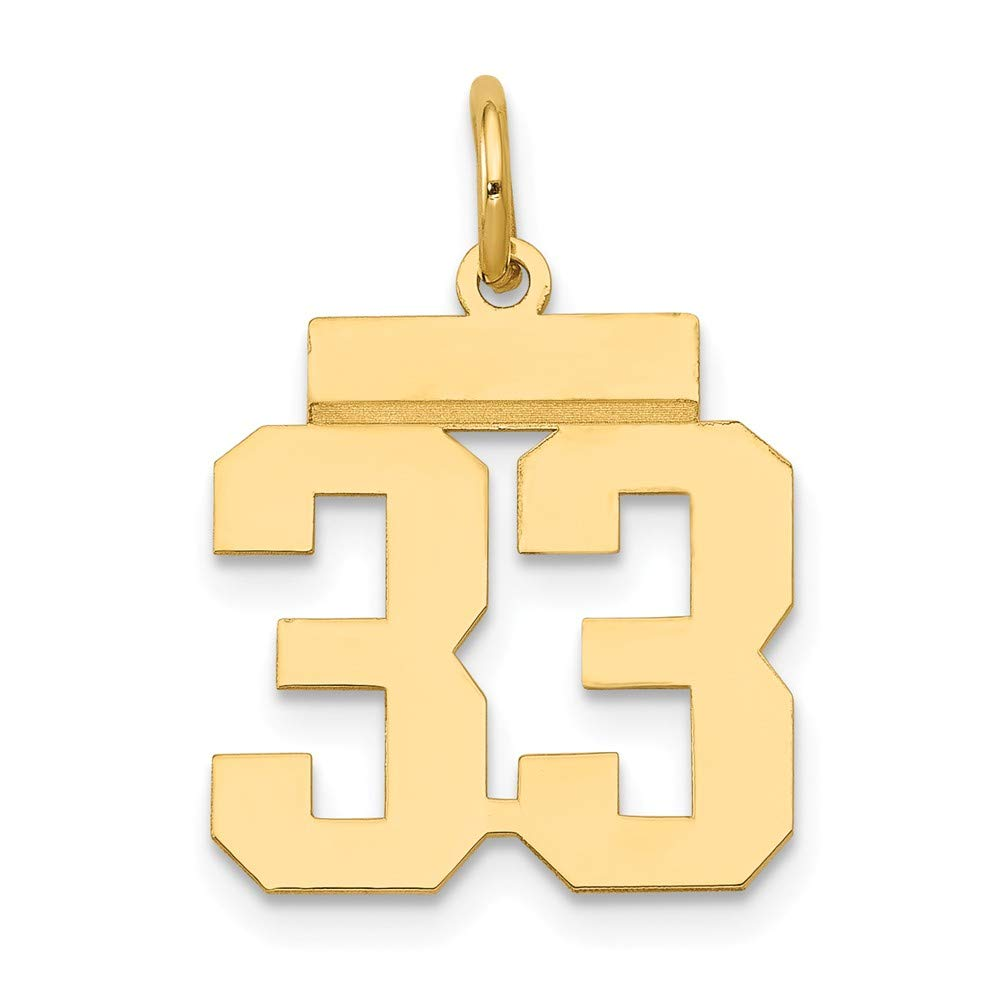 14K Yellow Gold Small Polished Number 33 Charm