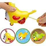 Babytintin Lovely bird groud toys,Amphibious Clockwork Dabbling Toy Baby bath water toy for kids,wind up bathtub toys,easy&funny bath time (Pack of 1)