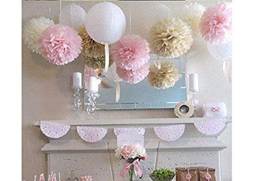 OH So Pretty in Pink Delicate Pink Decorations Tissue Paper Pom Pom Flowers & Lanterns for Wedding, Shower & Party Decorations in White, Pink and Champagne (Pack of 9 Pcs) (Pink Decorations Wedding)