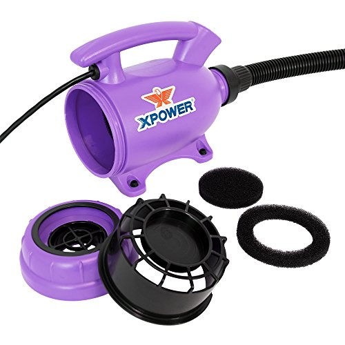 XPOWER B-55 Portable 2 HP Home Pet Grooming 2-in-1 Dog Force Hair Dryer & Vacuum - Purple