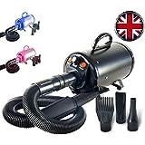 Gravitis 2800W Stepless Speed Dog Cat Pet Grooming Hair Dryer Hairdryer Blaster Blower (Black)