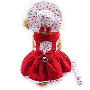 4pcs Dog puppy luxury princess Tutu Dress Skirt Set Small Dog Clothes Shirt Costume( Dog Dress+Dog Hat+Dog Panties+Dog Leash ) (L, Red Heart)