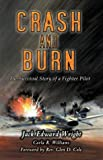 img - for Crash and Burn: The Survival Story of a Fighter Pilot book / textbook / text book
