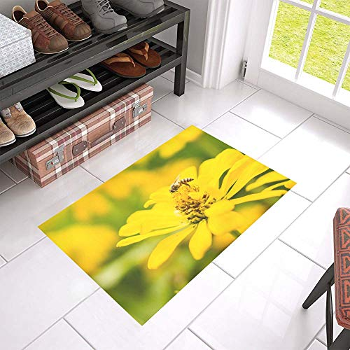 (HUAPIN Honey Bee Pollinate Yellow Flower Welcome Cleaner Doormat for Home and Business Indoors and Outdoors Dirt Trapper Door Mat Non-Slip Entrance Rug Carpet 23.6