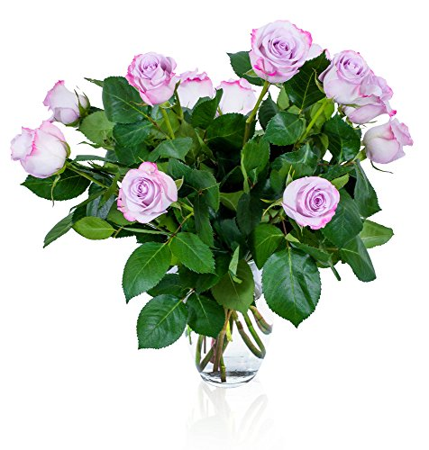 FLWERZ [Touch of Magnificence] One Dozen Classic Aromatic Beautiful Blooming Purple Roses Gorgeous Long Stem Fresh-Cut Hand-Made Luxury Bouquet Arrangement of Rose Flowers w/Free clear 8 oz Vase Beautiful Expressions Roses