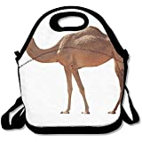 Arabian Camel Isolated On White Background Unique Lunch Tote Lunch Bag School Reusable