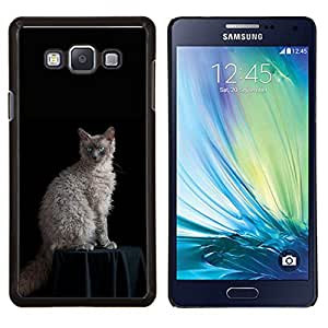 EJOOY---Cubierta de la caja de protección para la piel dura ** Samsung Galaxy A7 A7000 ** --Laperm Gato Rizado Ojos azules del gato