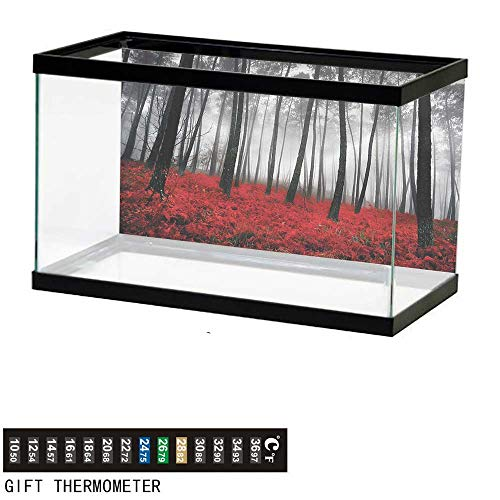 bybyhome Fish Tank Backdrop Forest,Mystic Woodland Trees,Aquarium Background,48