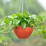 Antier Plastic Flower Plant Hanging Pot Chain Basket Balcony Indoor/Outdoor Decoration (Multicolor)