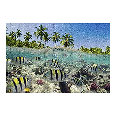 Coral Reef Scene - Tropical Fish 9006021 (Premium 1000 Piece Jigsaw Puzzle for Adults, 20x30, Made in USA!): Toys & Games