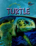 The Life of a Turtle, Clare Hibbert, 1410908216