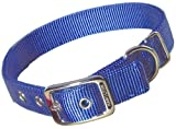 Hamilton Double Thick Nylon Deluxe Dog Collar, 1-Inch by 20-Inch, Berry Blue, My Pet Supplies