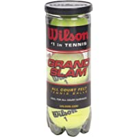 Wilson Sporting Goods Grand Slam Extra Duty Tennis Balls (1-Can)