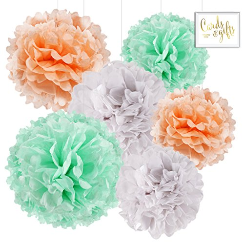 Easter Champagne (Andaz Press Hanging Tissue Paper Pom Poms Party Decor Trio Kit with Free Party Sign, Peach, Mint Green, White, 6-Pack, For Champagne Spring Baby Shower Easter Classroom Decorations)