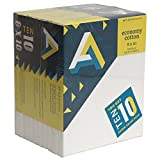 Art Alternatives stretched  White Canvas Super Value Pack-8 x 10 inches-Pack of 10