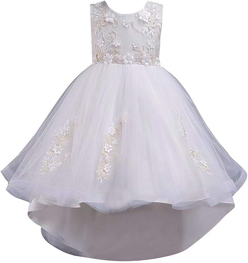 Girls Lace Bowknot Princess Wedding Performance Formal Tutu Dress Clothes Lotx1