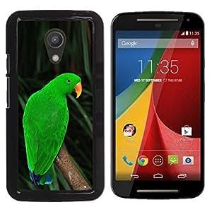Loro Inmigrante cubano o haitiano Verde Naturaleza trópicos- Metal de aluminio y de plástico duro Caja del teléfono - Negro - Motorola G 2ND GEN II