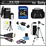64GB Accessory Kit For Sony HDR-CX430V, HDR-PJ430V HD Camcorder Includes 64GB High Speed SD Memory Card + Replacement (2300Mah) NP-FV70 Battery + Ac/Dc Charger + Deluxe Case + Tripod + 3PC Filter Kit (UV-CPL-FLD) + Micro HDMI Cable + USB 2.0 SD Reader ++
