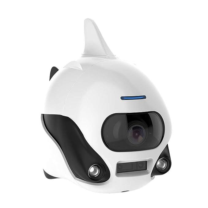 QinLL Biki, Drone Submarino, Control Remoto inalámbrico Sumergible ...