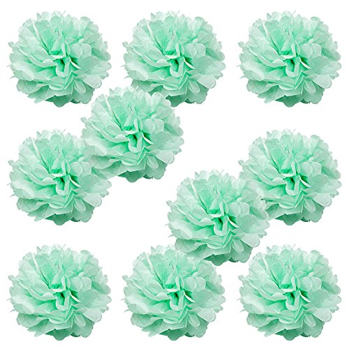 WYZworks Set of 10 - SEAFOAM GREEN 16'' - (10 Pack) Tissue Pom Poms Flower Party Decorations for Weddings, Birthday, Bridal, Baby Showers, Nursery, Décor by WYZworks