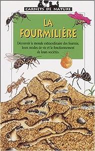 """Afficher """"La fourmilière"""""""